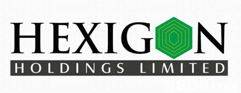 HEXIG N HOLDINGS LIMITED,text,green,logo,font,product