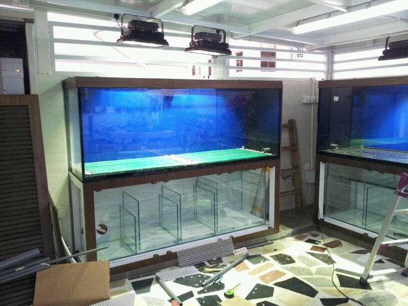 technology,aquarium,display device,electronics,multimedia