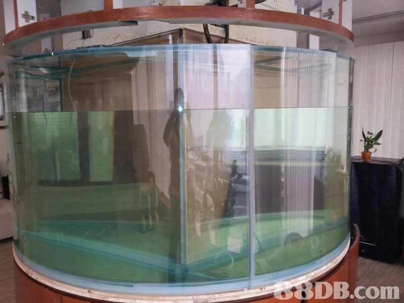 8DB.com  glass,