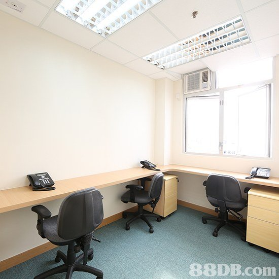 88DB.com  office
