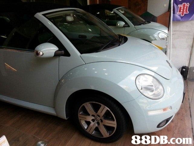 Land vehicle,Vehicle,Car,Volkswagen new beetle,Motor vehicle