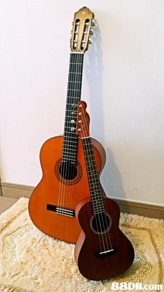 88DB.conm,musical instrument,guitar,string instrument,string instrument,plucked string instruments
