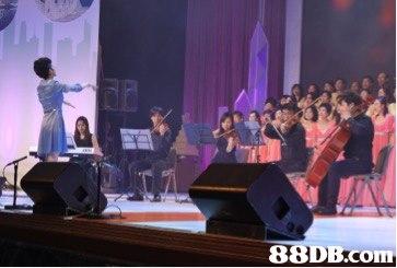 88DB.com  performance
