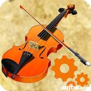 violin,musical instrument,violin family,string instrument,cello