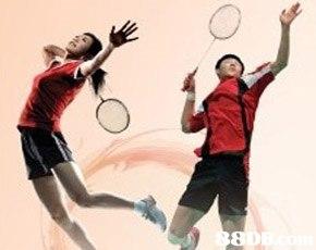 Tennis racket,Racketlon,Sports,Racquet sport,Racket