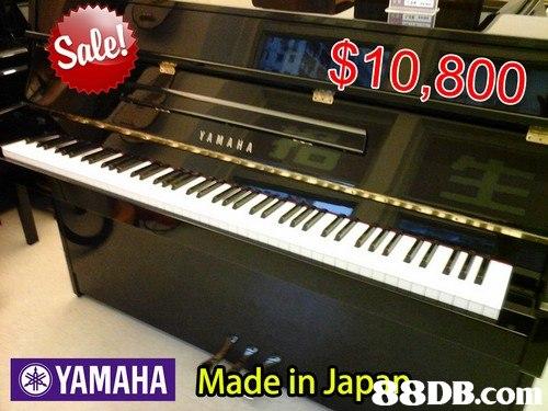 Sole $10,800 YA ARA YAMAHA Made in JapgBDB.co ap88DB.co  musical instrument