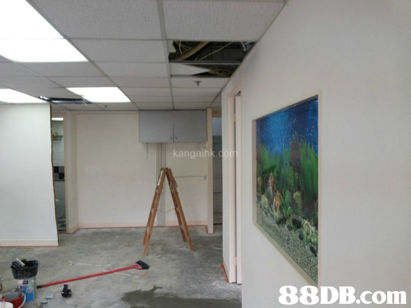 kangaihk 88DB.com  property