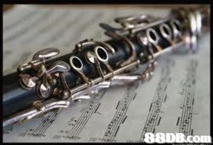 musical instrument,wind instrument,woodwind instrument,clarinet,clarinet family