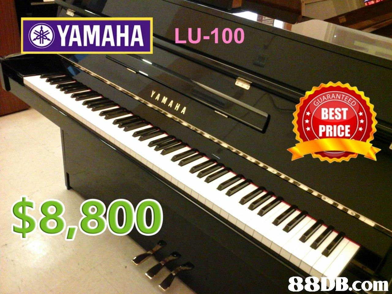 YAMAHA LU-100 ARANT YA MAHA BEST PRICE $8,800,musical instrument,piano,digital piano,keyboard,technology
