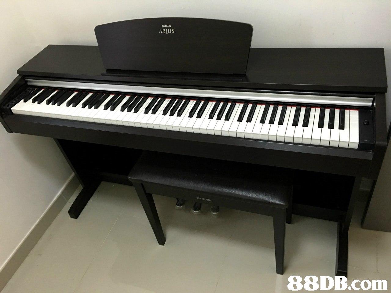 Buy Yamaha Ydp