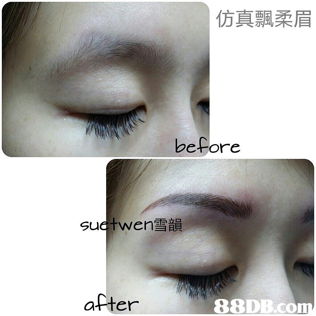 仿真飄柔眉 before sudtwen雪韻 ミヨ日貝 after,eyebrow,eyelash,nose,eye,cosmetics
