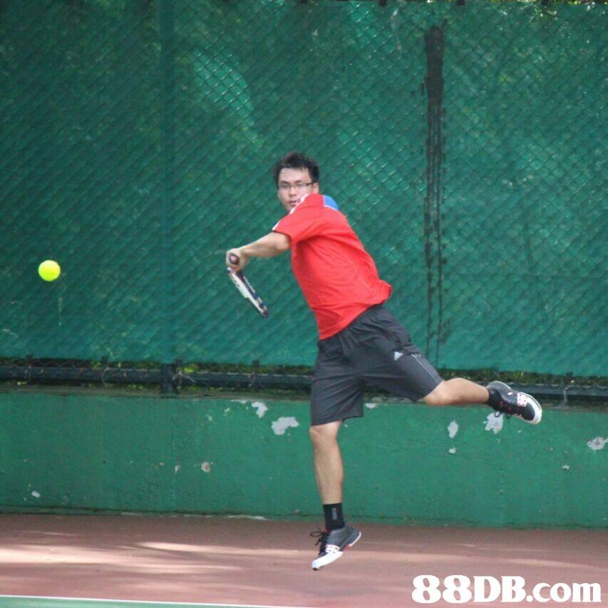 Sports,Racquet sport,Tennis,Racketlon,Ball game