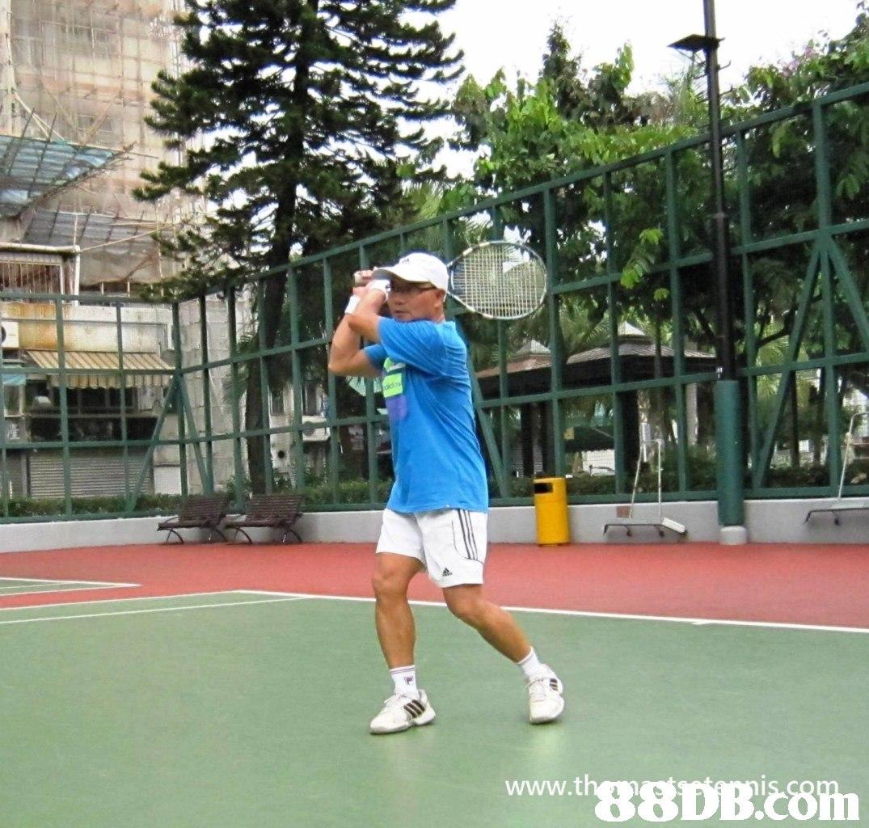 www.thg8DB 8  sports
