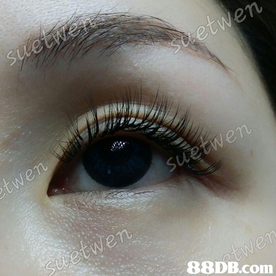 etwen 88DB.com  eyebrow
