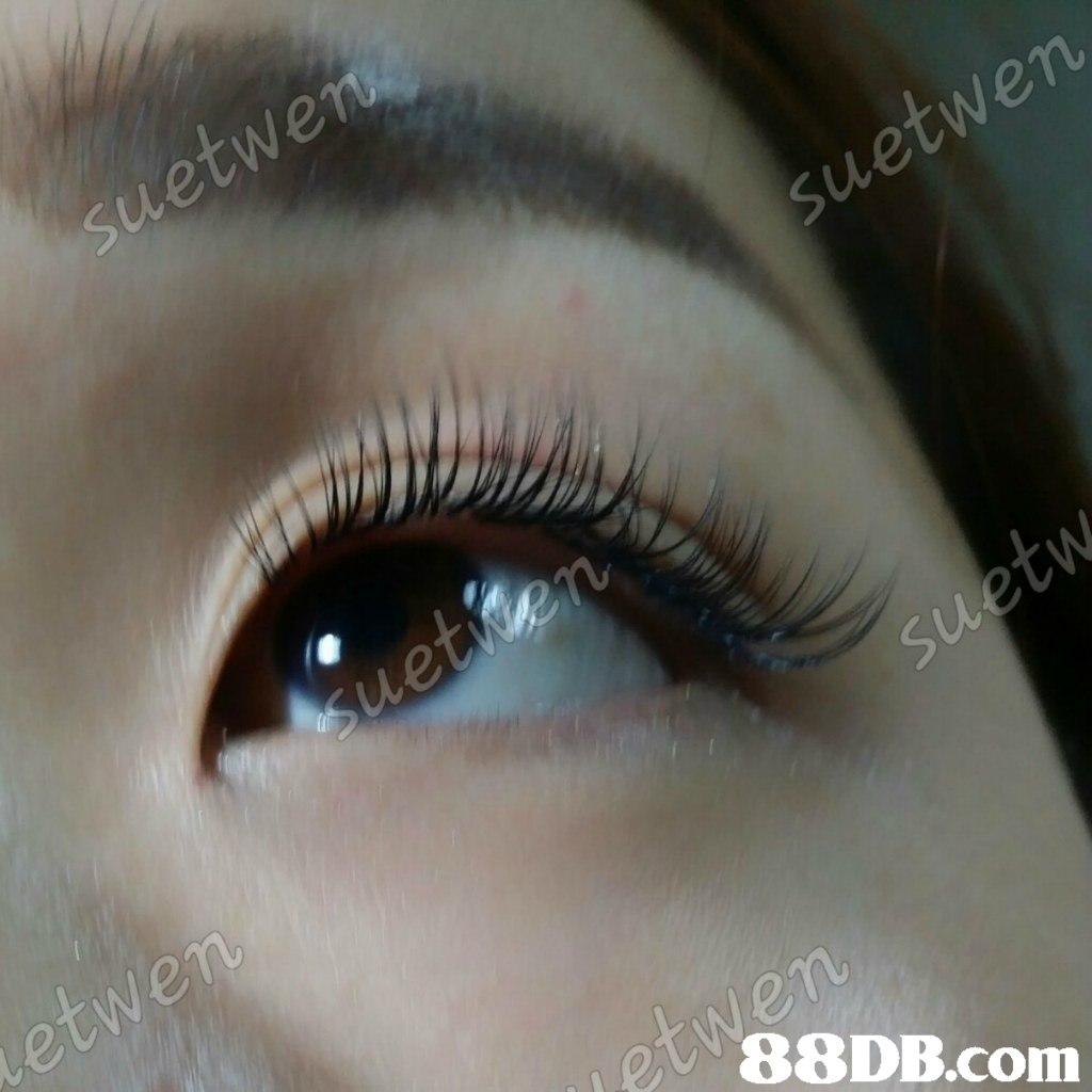 suetwe suetwen uue Uw 88DB.com  eyebrow