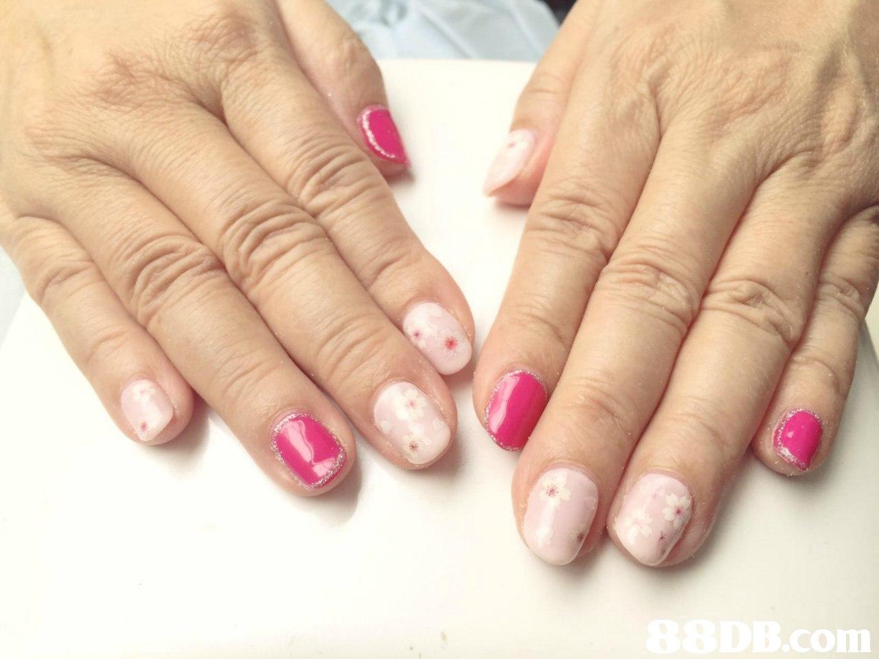 BEDB.com  finger