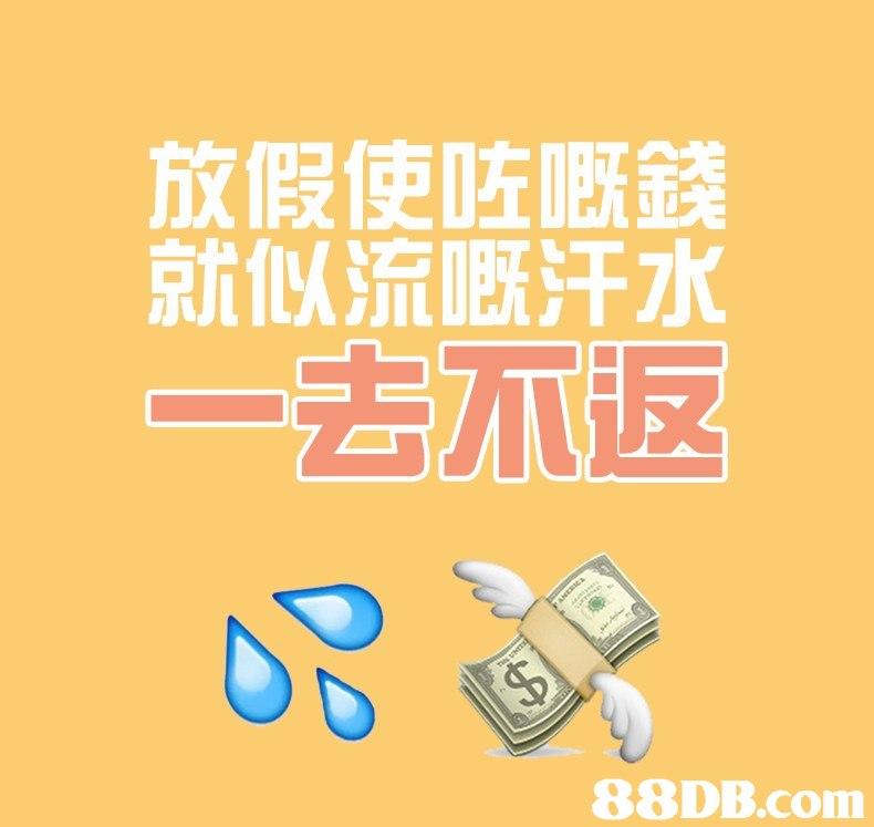 放假使咗嘅錢 就似流慨汗水 去不返,text,yellow,font,product,product