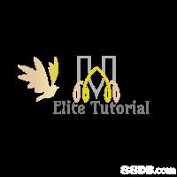 Elite Tutorial  yellow,text,logo,font,product