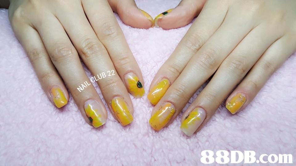 ป822,nail,finger,nail care,manicure,hand