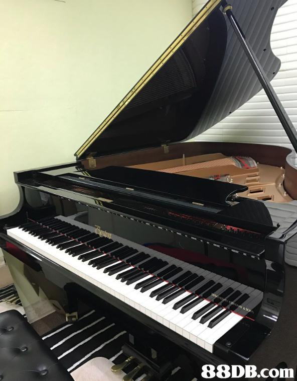 musical instrument,piano,keyboard,digital piano,player piano