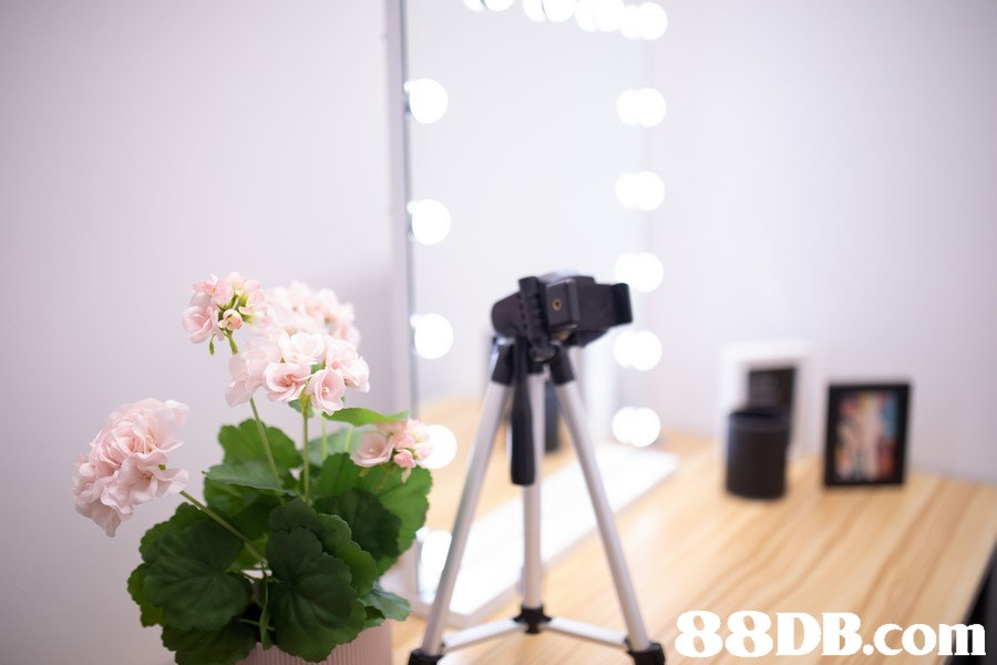 0 88DB.com,flower