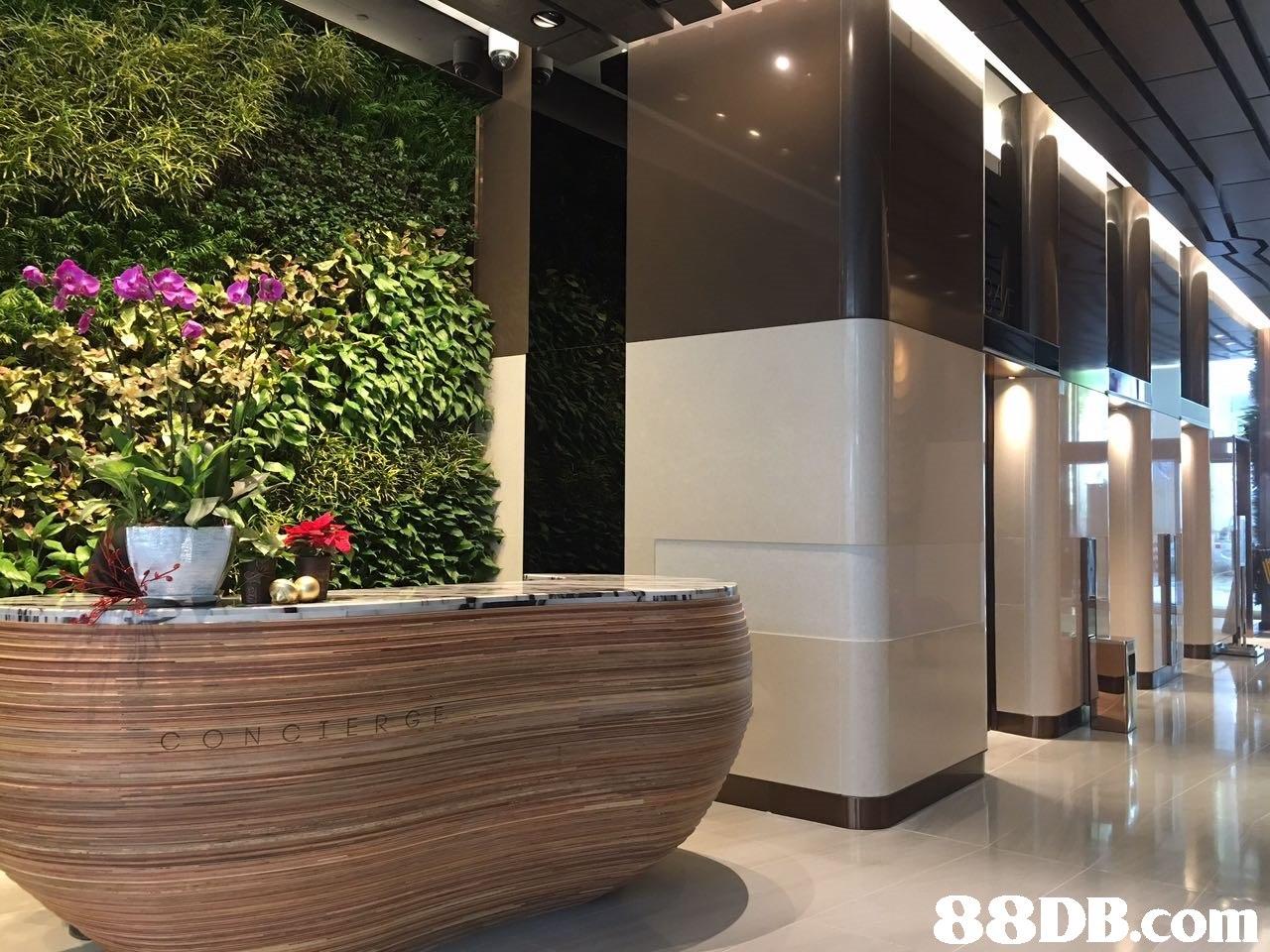 interior design,lobby,