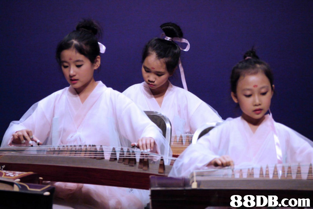 Musical instrument,Traditional korean musical instruments,Gayageum,String instrument,Koto