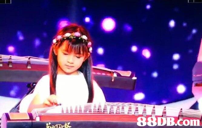 Musical instrument,Guzheng,Đàn tranh,Plucked string instruments,String instrument
