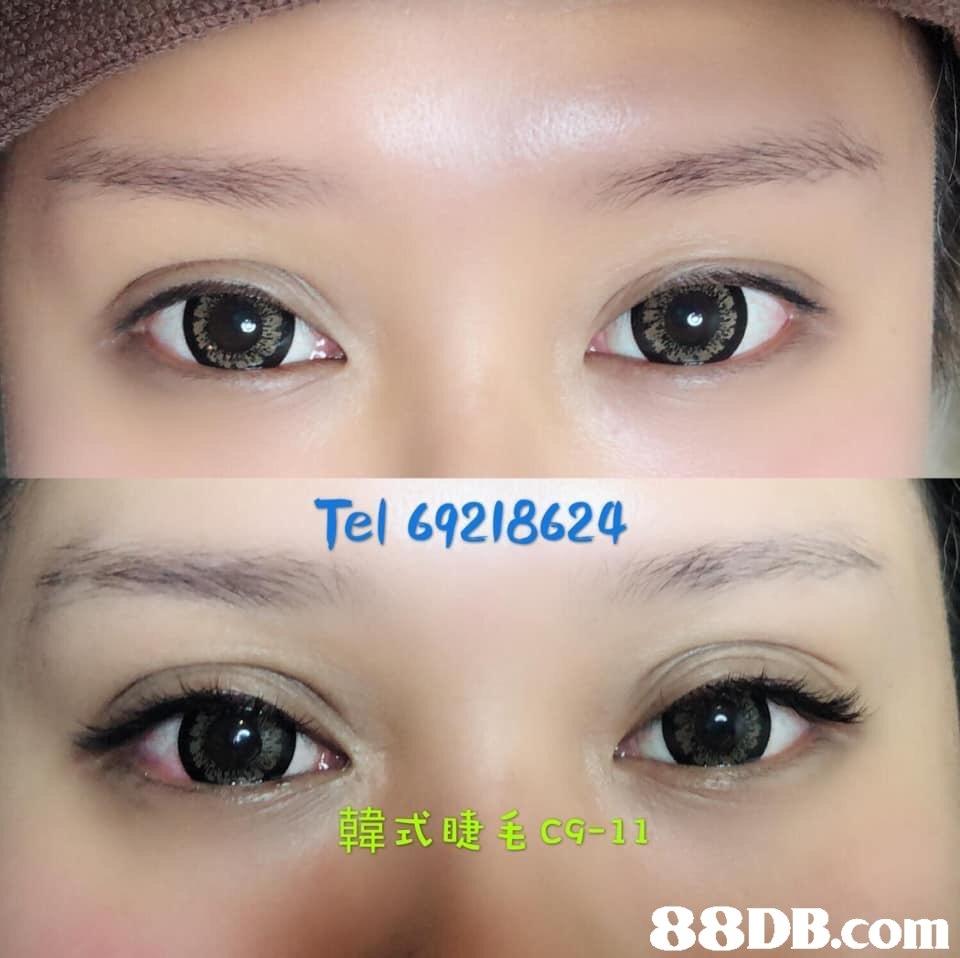Tel 69218624 韓式睫毛c9-11 BRDR.COm,Eyebrow,Face,Eye,Nose,Forehead