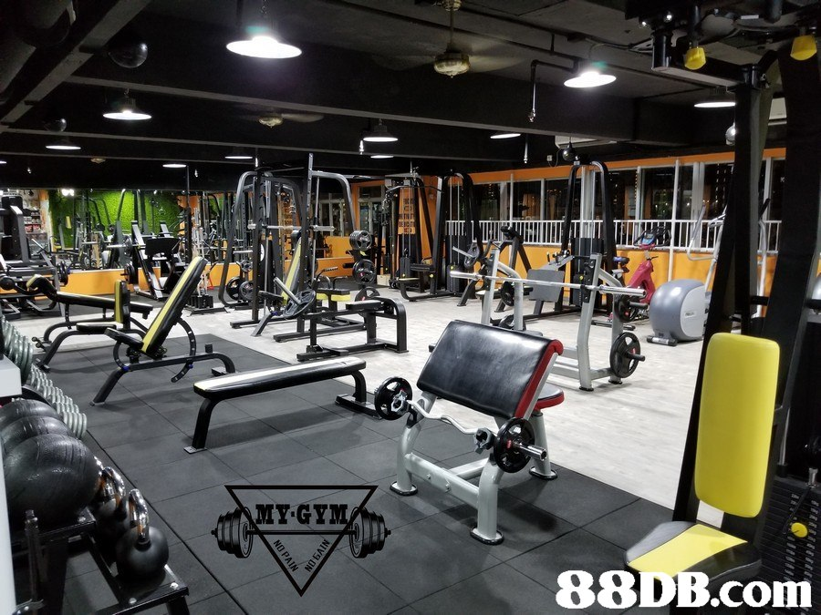 MY GY 88 DB.com  Gym,Sport venue,Room,Physical fitness,Exercise equipment