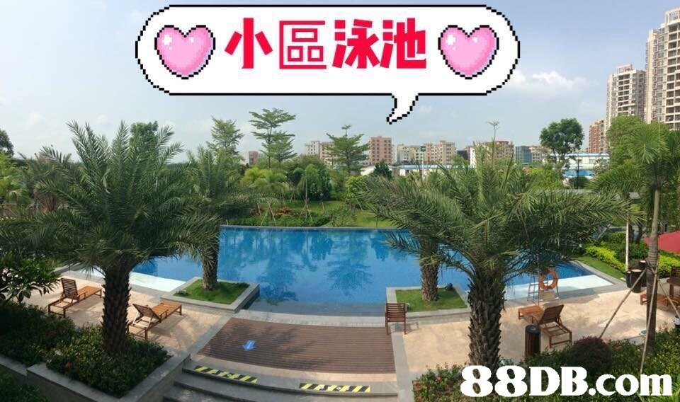 (C)小區泳池09)  in  Sky,Condominium,Building,