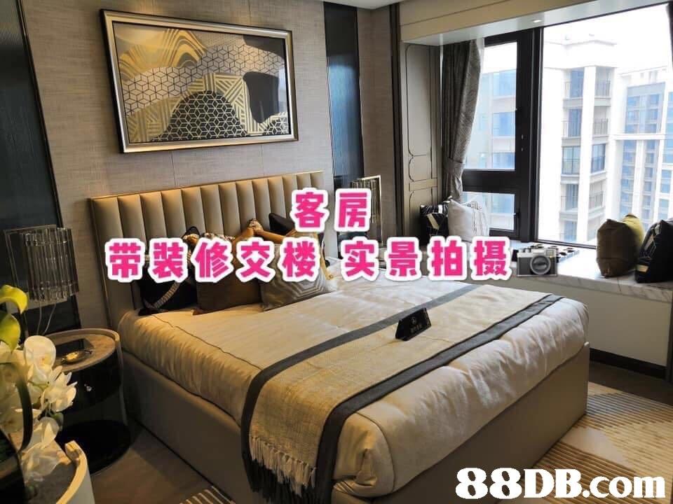 客房 带装修,交後实景柏摄   Bedroom,Furniture,Room,Property,Interior design